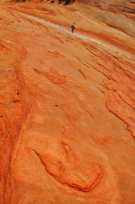Dinosaur Tracks, Ultimate Kanab Tour, Southern Utah Adventure Tour