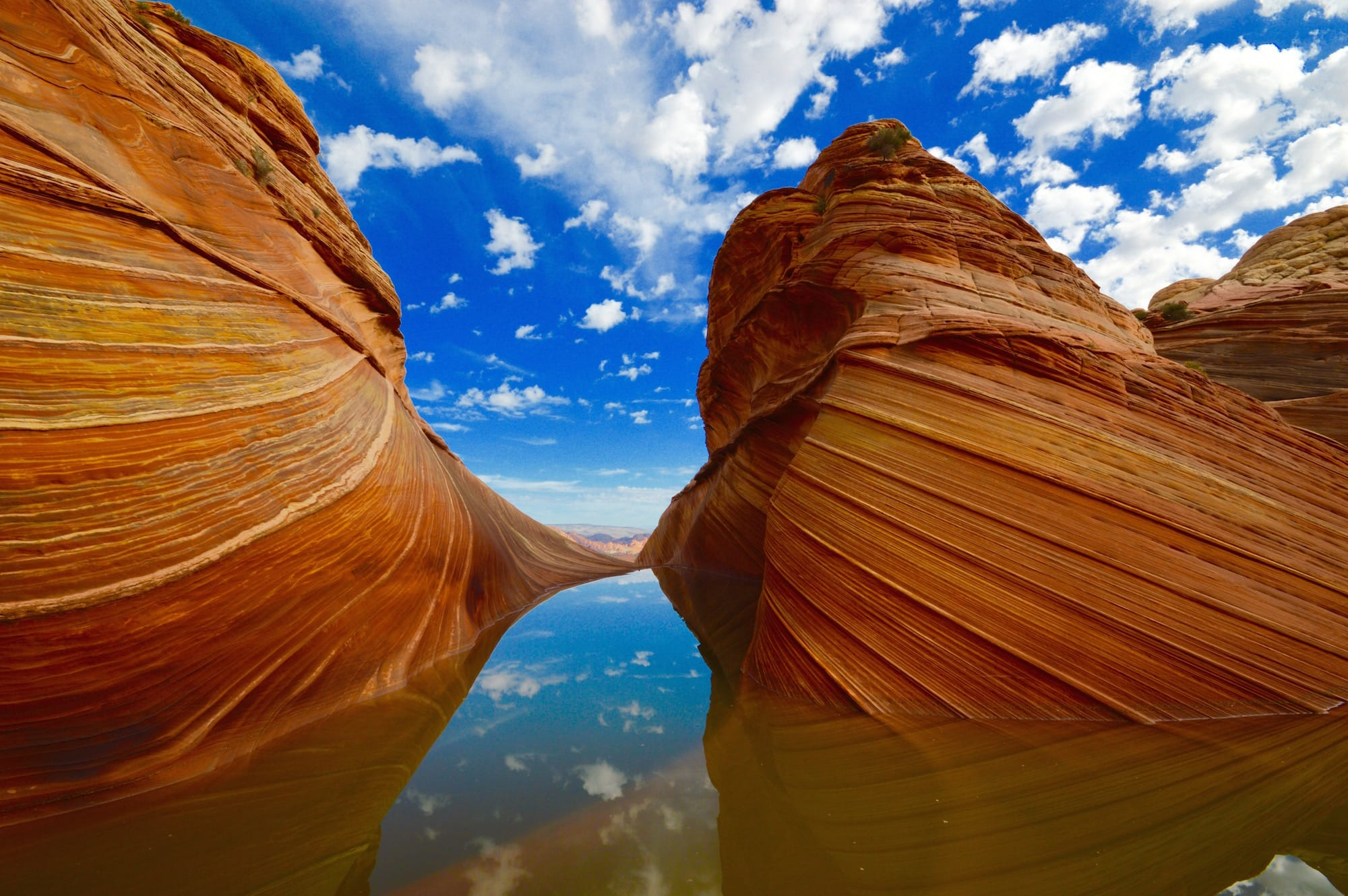 Wave Arizona reflection