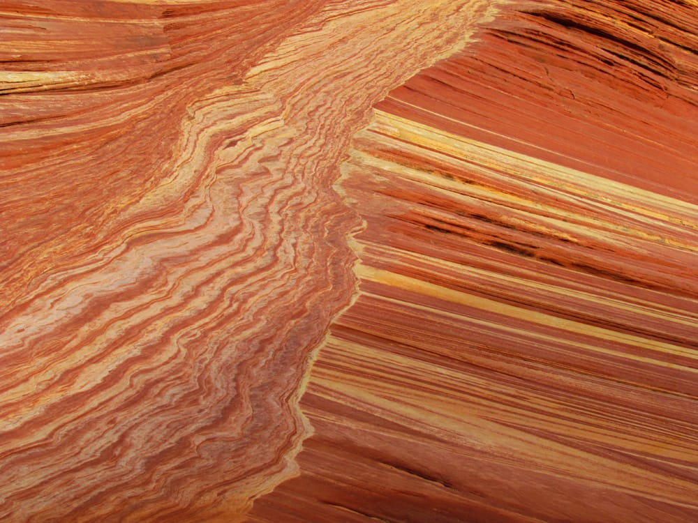 Sandstone detail, North Coyote Buttes