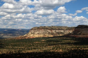 White Cliffs near Kanab