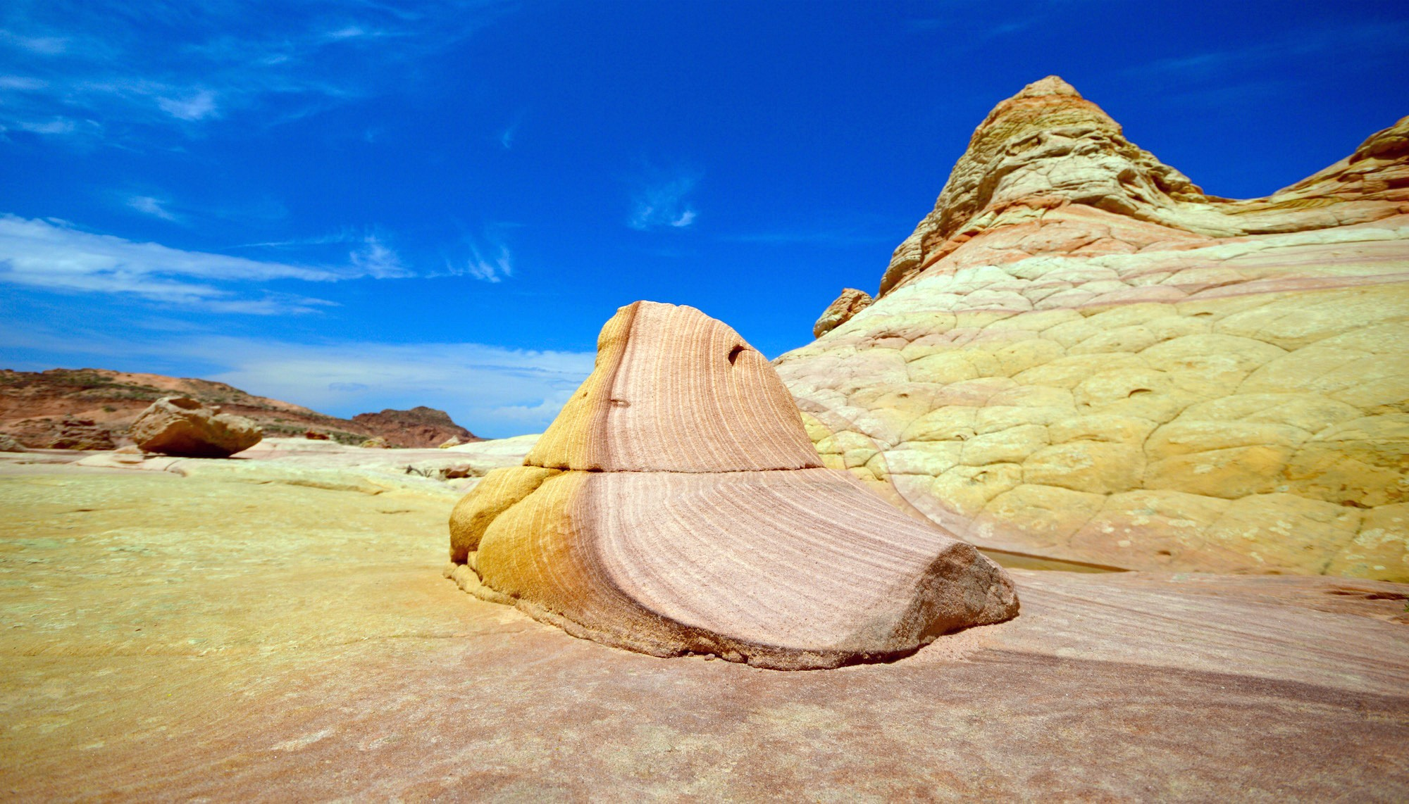 South Coyote Buttes 19