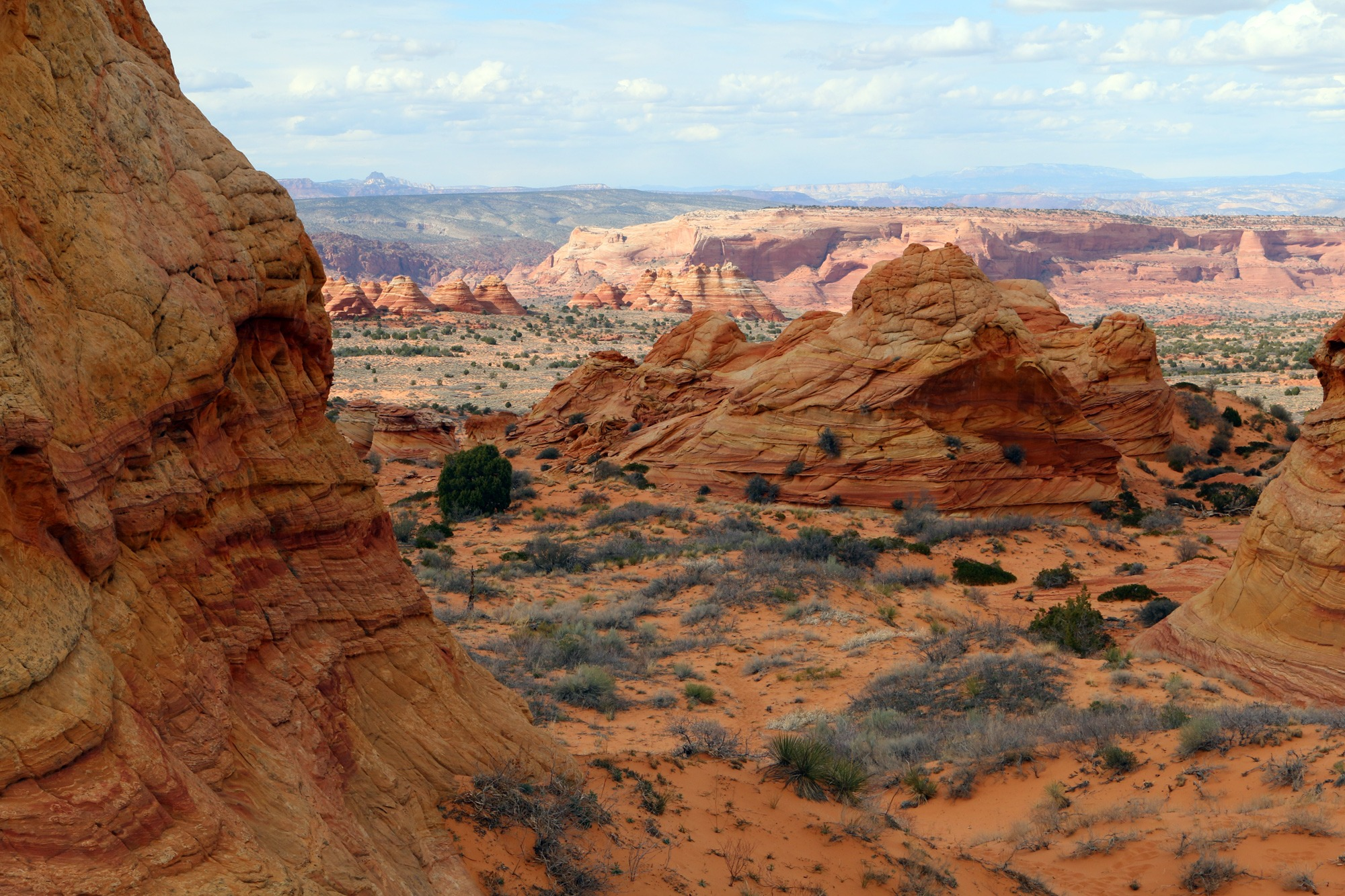 South Coyote Buttes 9