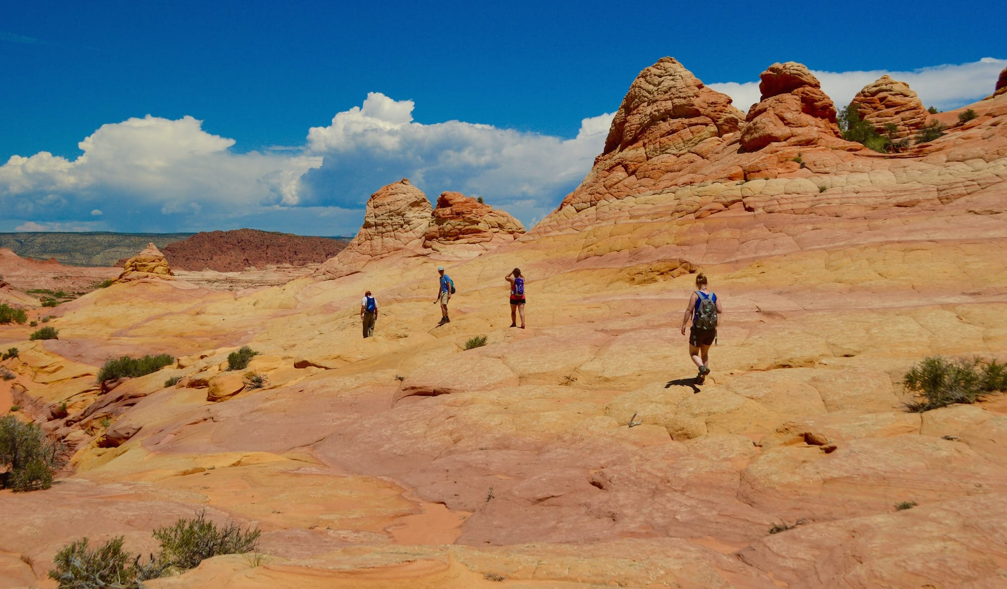 Hikers explore Cottonwood Cove during South Coyote Buttes tour