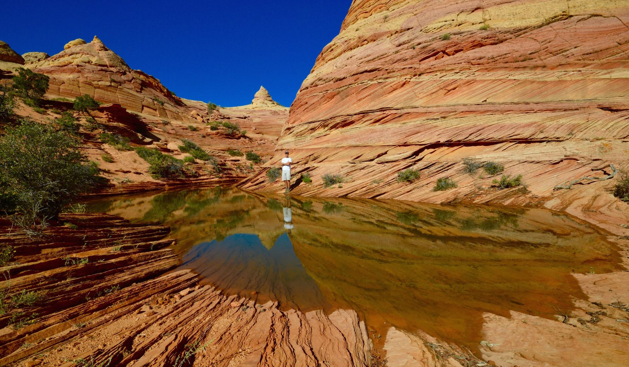 Reflecting pool at South Coyote Buttes