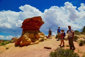 Tour guests at South Coyote Buttes