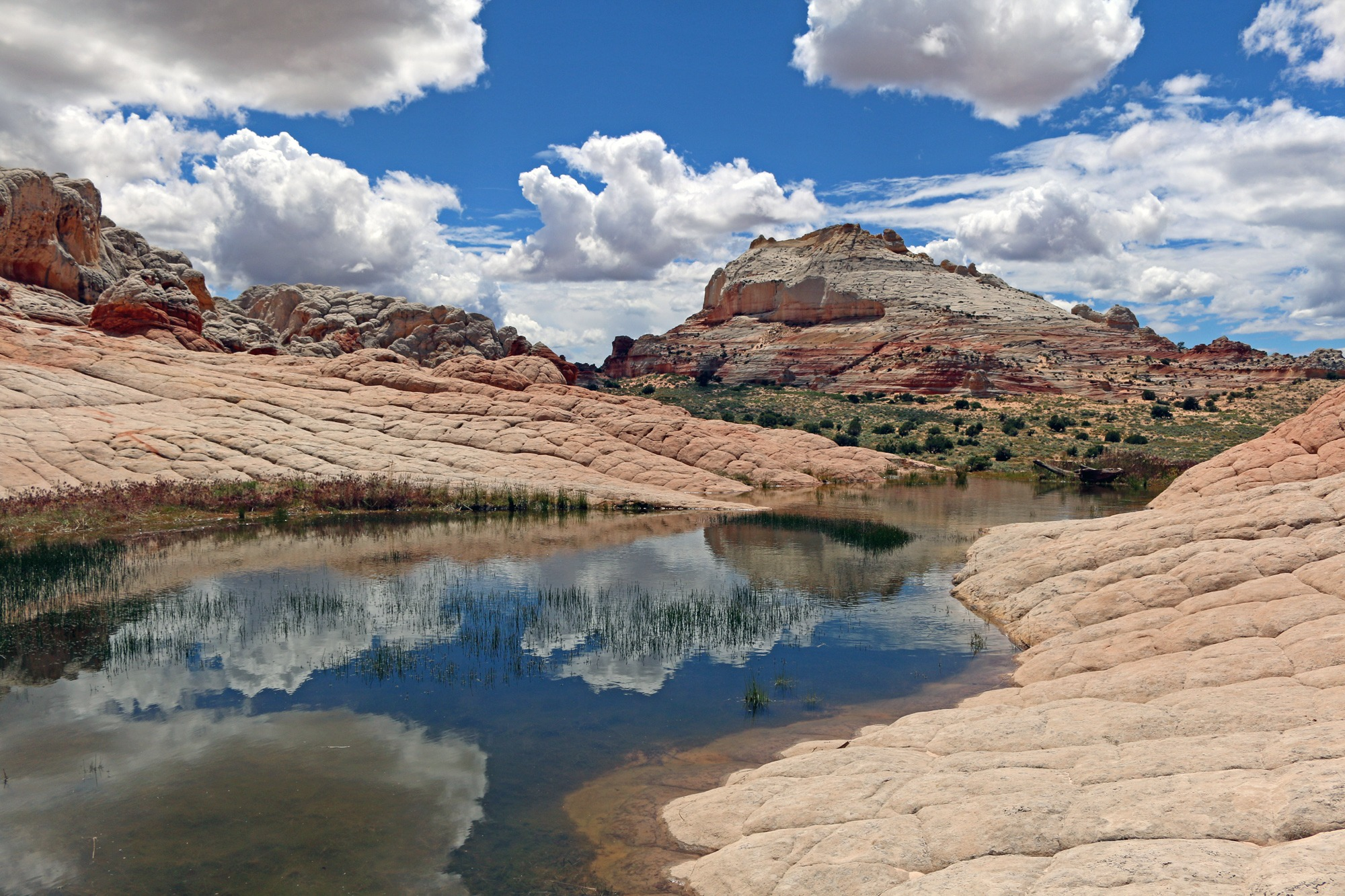 White Pocket Butte reflection