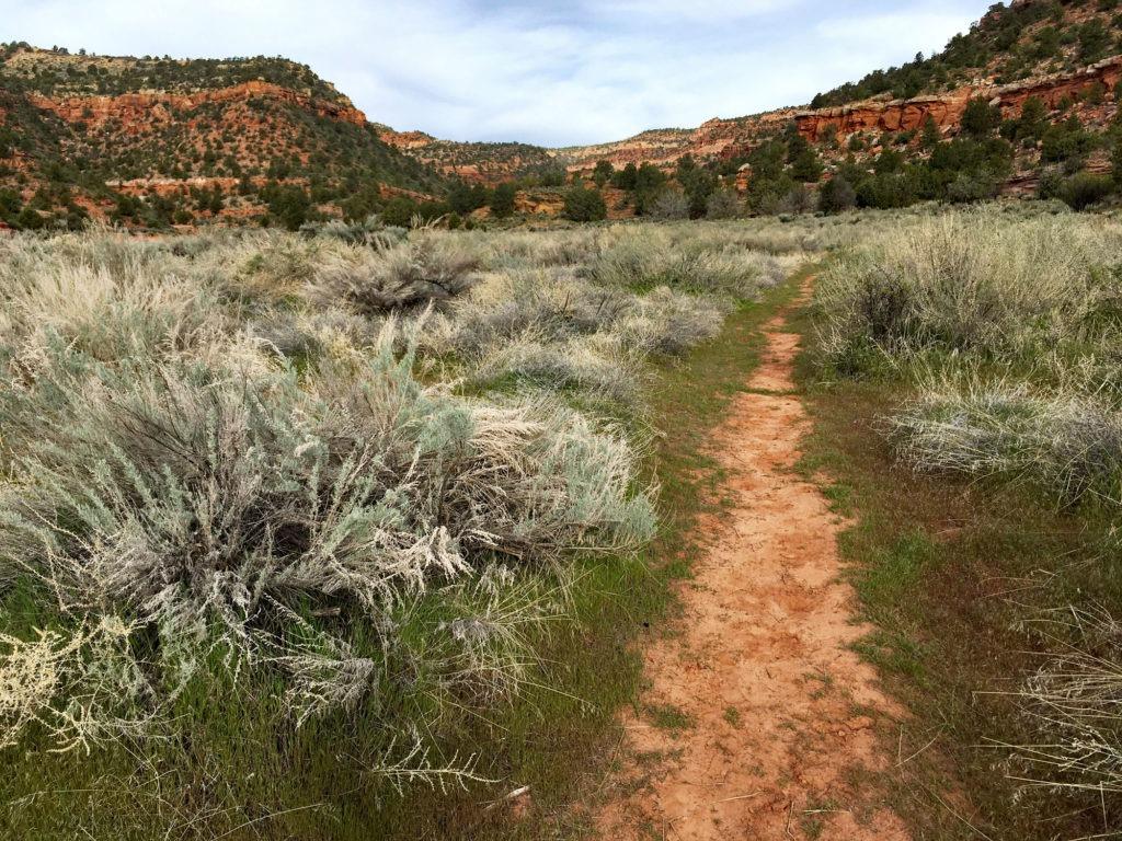 Kanab hiking trails - Dreamland Safari Tours